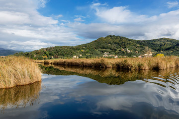 The sky and the village of Massaciuccoli are reflected in the waters of the homonymous lake, Lucca, Italy