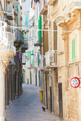 Molfetta, Apulia - A black cat tiptoeing through a historic alleyway in Molfetta