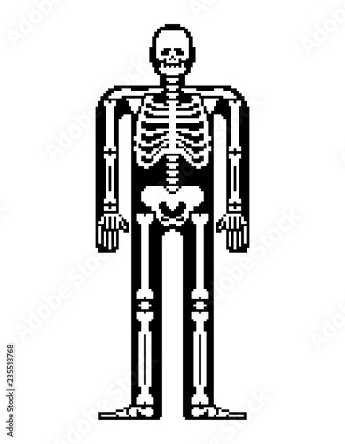 Skeleton Pixel Art Skull And Bones Anatomy 8 Bit Pixelate Pelvic