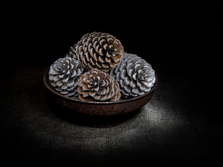Pine cones in bowl, dark still life. Light painting.