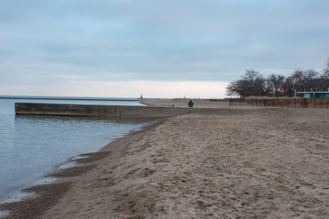 Single person at beach with bare trees
