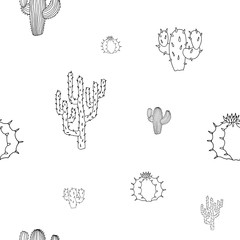Vector seamless pattern with cactuses isolated on white background