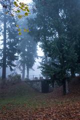 Mystische geheimnisvolle Brücke im Park bei Nebel