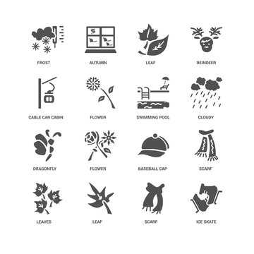 Ice skate, Flower, Frost, Autumn, Scarf, Baseball cap, Scarf ico