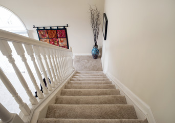 Descending Open Staircase with Carpeting