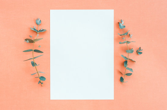 Blank paper and eucalyptus on peach canvas background