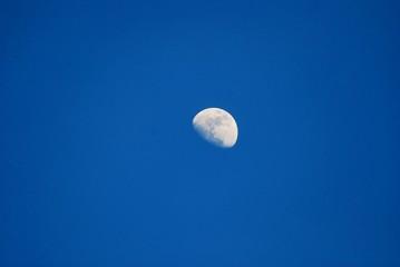 half moon against blue sky