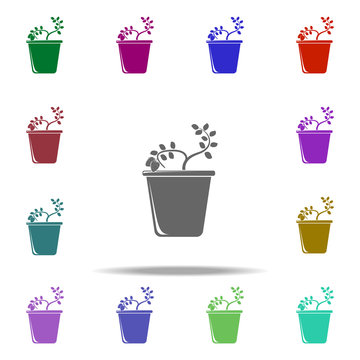 stawberry in pot illustration icon. Elements of Fruit in pot in multi color style icons. Simple icon for websites, web design, mobile app, info graphics
