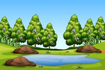 A nature green landscape