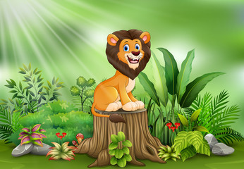 Spoed Foto op Canvas Lieveheersbeestjes Happy cartoon lion sitting on tree stump with green plants