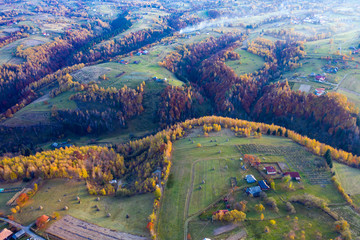 Drone view of autumn meadow and forest