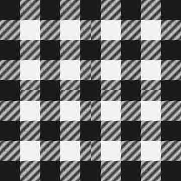 Lumberjack plaid pattern. Template white and black lumberjack.
