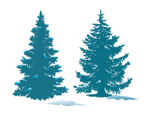 Spruce in the snow. Vector illustration of snow covered firs.