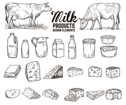 Set of hand drawn milk products design elements. butter, cheese, sour cream, yogurt, cows. For package, poster, sign, banner, flyer.