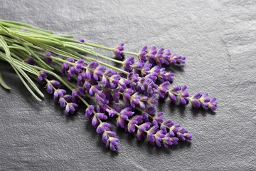 Bouquet of lavender  on a gray  background.