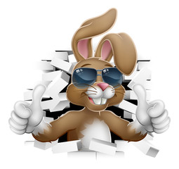 Easter bunny rabbit cartoon character in cool sunglasses or shades breaking through the background wall and giving a thumbs up