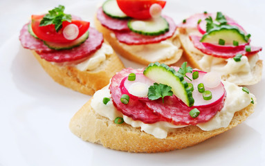 Tasty appetizers with cream cheese, salami, red radish, cucumbers and tomatoes over white background.