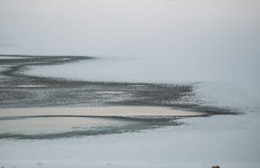 frozen lake. Winter in Scandinavia, Finland