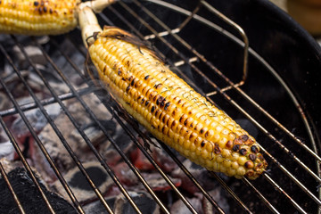 Close up of corncob grilling on barbecue grill