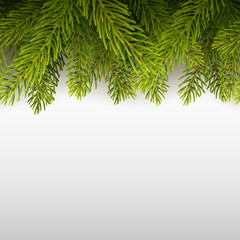 Vector realistic seamless background with Christmas tree.