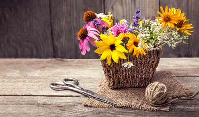 Wild flowers and scissors on old grunge wooden background (chamomile lupine dandelions thyme mint bells rape)