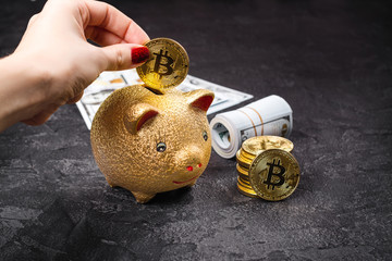 Bitcoins, currency and piggie bank