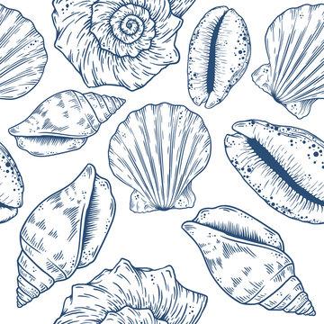 Hand drawn marine background. Vector isolated eps10 illustration.