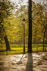 jesienny park w Krakowie po deszczu w blasku słońca