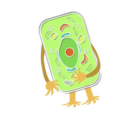 A plant cell illustration with arms and legs.