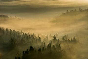 Jesienne mgły w Beskidzie Sądeckim,małopolska.