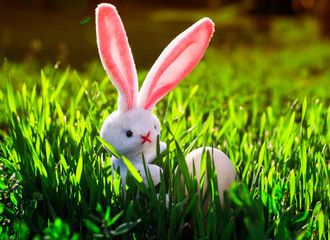 Easter background with a tiny rabbit holding a white chicken egg in green grass with dew drops on a Sunny spring meadow