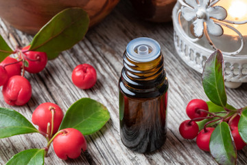 A bottle of wintergreen essential oil with wintergreen twigs