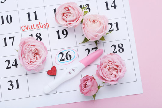 Pregnancy test with rose flowers on paper calendar