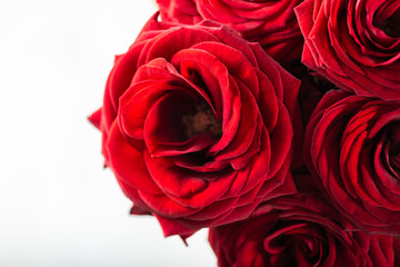 Perfect bouquet of red roses, love and romance concept