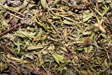 Dried thyme.Background of thyme.Thyme for brewing tea.Thyme herb is a medicinal plant.