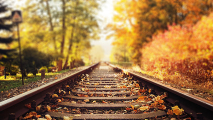 Foto op Plexiglas Artist KB Colorful autumn leaves falling down on railway tracks