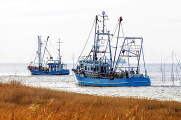 Flotte der Krabbenkutter an der Nordseeküste auf dem Weg zum Krabbenfang, Küstenfischerei von Granat in Norddeutschland