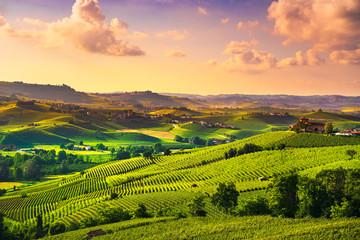 Garden Poster Vineyard Langhe vineyards sunset panorama, Barolo, Piedmont, Italy Europe.