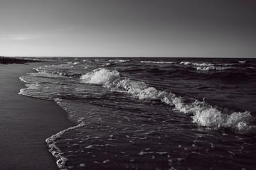 Baltic Sea beach black and white