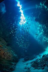 Obraz Morze czerwone Dahab - fototapety do salonu
