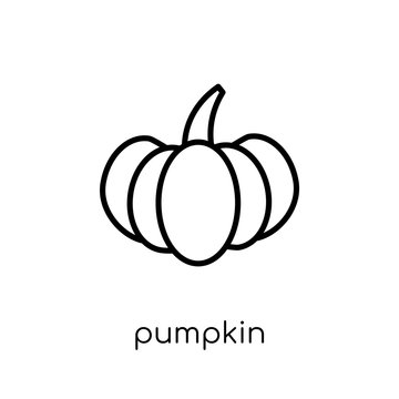 Pumpkin icon from Agriculture, Farming and Gardening collection.