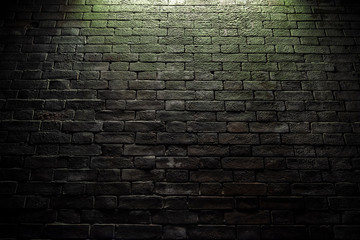レンガの壁 Moss on red brick