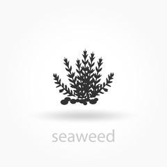Seaweed icon. vector logo template.