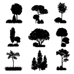 Collection of tree and shrub silhouettes vector