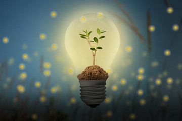 Save Energy with the lamp and plant bulb concept, with blur and blue shades, fireflies background