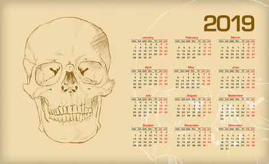 Calendar 2019. The human skull.