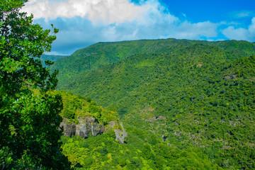 Ile Maurice - Parc National des Gorges de Rivière Noire - Point de vue