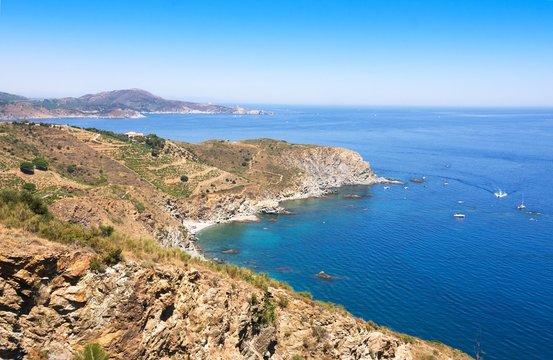 Rocky shore in marine reserve of Cerbere Banyuls, Mediterranean sea, Pyrenees Orientales, Cote Vermeille