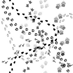 Animal and bird trace steps black imprints, seamless pattern on white