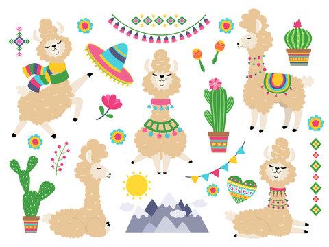 Llama set. Baby llamas cartoon alpaca, wild lama. Girl invitation elements vector